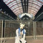 Spot at Antwerp Station