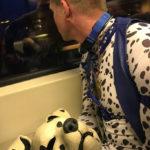 Spot on a train – Amsterdam-Schipol