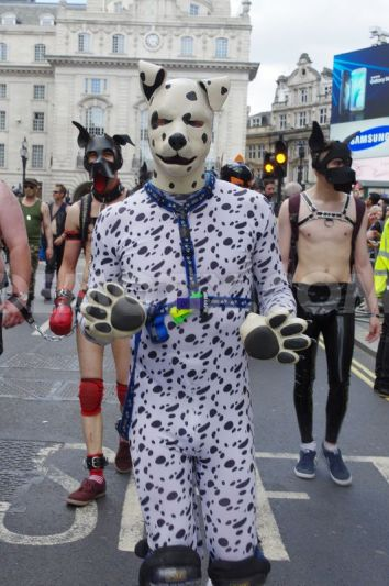 1435447590-thousands-watch-london-gay-pride-parade_7963156